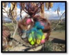 Alpaca Fiber Birdnesting Balls