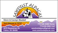 Sawdust Alpacas - Logo