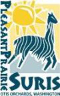 Pleasant Prairie Fashions - Logo