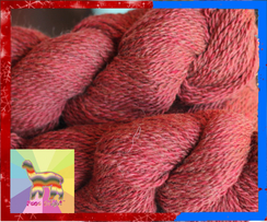 Photo of Paca Bright ™ Red Heather