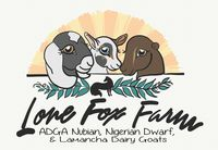 Lone Fox Farm - Logo