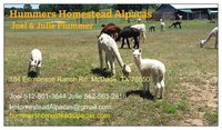 Hummers Homestead Alpacas - Logo