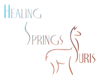 Healing Springs Suris LLC - Logo