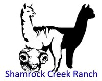 Shamrock Creek Ranch - Logo