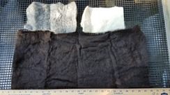 Photo of Black Grey White Felt Variety