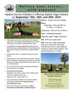 Alpaca Yoga Classes