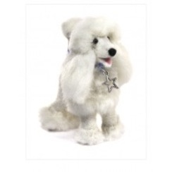 Photo of Felted Poodle