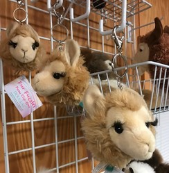 Photo of LLama Pom Clip