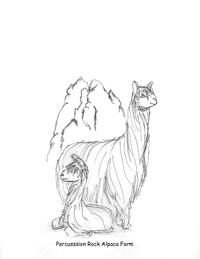 Percussion Rock Alpaca Farm - Logo