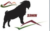 Swan Ridge Goats - Logo