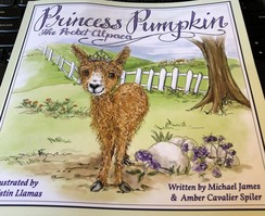 Photo of Princess Pumpkin the storybook