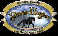 Dream Hayven - Logo