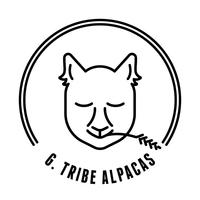 G.Tribe Alpacas - Logo