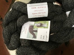 YARN...BAVs Indie and El Gringo 16