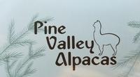Pine Valley Alpacas - Logo