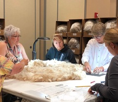 Alpaca Fiber Int. - Same Farm 2nd Person