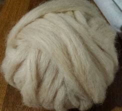 Photo of Eloise's Apricot Navajo-Churro Roving