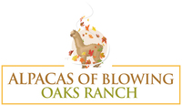 Blowing Oaks Ranch, LLC - Logo