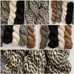 Photo of Yarn - 200yd skeins