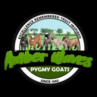 Amber Waves Pygmy Goats - Logo
