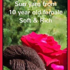 Photo of Fay's Dark Brown Suri Yarn