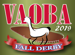 VAOBA Fall Derby