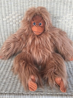 Photo of Orangutan Puppet