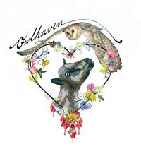 Owlhaven Farm - Logo