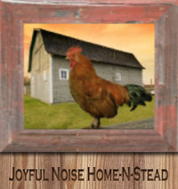 Joyful Noise Home-N-Stead - Logo