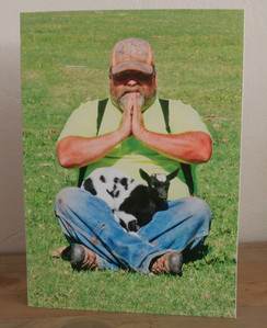 Unconventional Goat Yoga Card