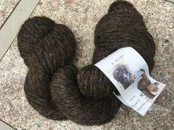 Photo of Yarn... BAV's Koko Bean & GP Artemis 18
