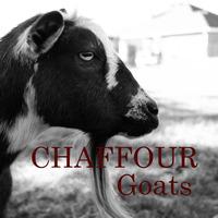 Chaffour Goats - Logo