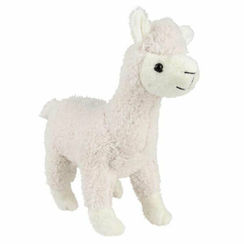 Photo of Adventure Planet Alpaca