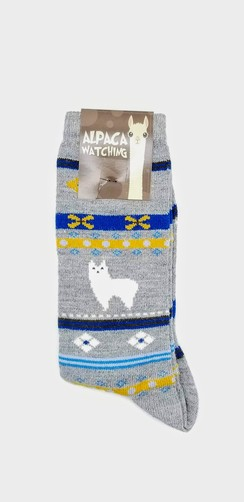 Photo of Alpaca Watching Socks