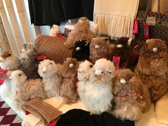 Photo of Alpaca Stuffed Animal