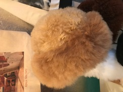 Photo of Fur Hat