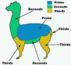 Alpaca Fiber Grading Chart (per pintrist.com)
