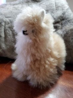 Photo of Large Alpaca Stuffie