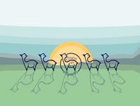 Cinco C's Alpacas - Logo