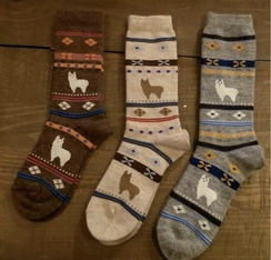 Photo of Alpaca Watching Socks - Youth Sizes