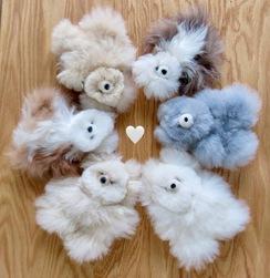 TOYS: Alpaca POCKET Teddy Bears