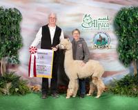 Never Ending Alpaca Farm - Logo