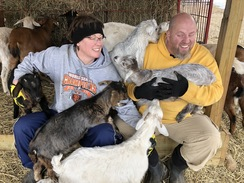 Goat pile on the ranchers