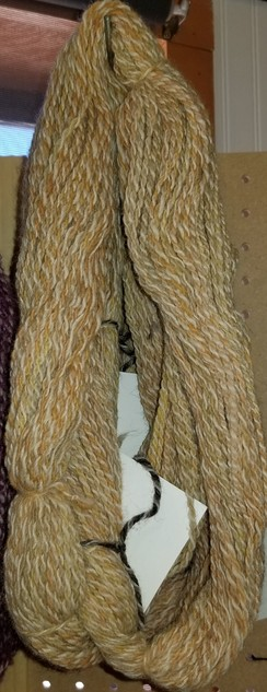 Photo of Butternut - Hand Spun, Hand Painted