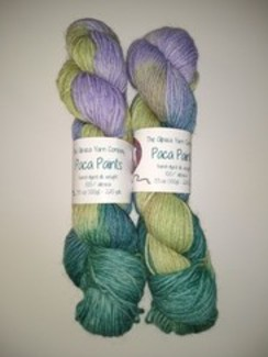 Photo of Alpaca Paints Hand Dyed Yarn