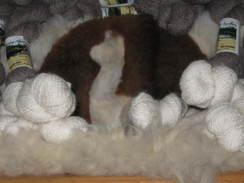 Mixed Grades 2 & 3 Fine Alpaca Fiber