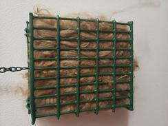 Bird Nester