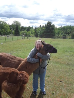 One of our visitors enjoying some hugs with her llama during a break in a llama walk - May 2020!