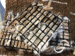 Photo of Alpaca Fiber Bird Nesting Squares