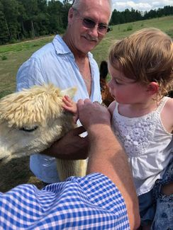 All About Alpacas!